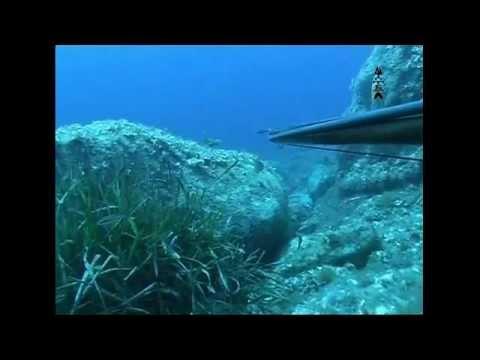 tecniche di pesca sub..(....ESTATE..)