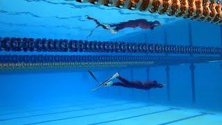 Gambar cover Cikini Freediving - Stadium Aquatic Senayan