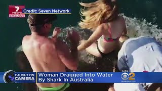 Shark Drags Woman Into Water
