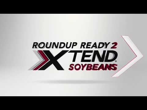 Roundup Ready 2 Xtend™ Soybeans