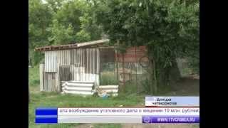 В Симферополе появится полноценный приют для бездомных животных