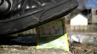 shoe destroys pokemon card Thumbnail