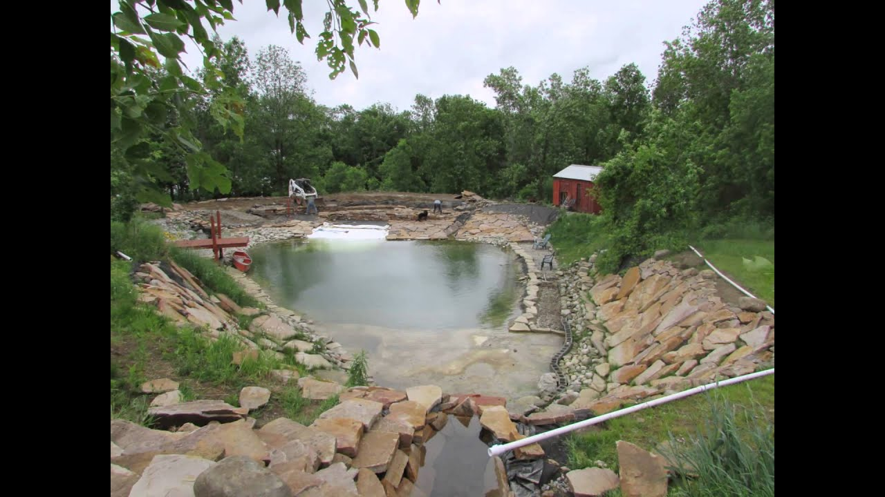 15 building your own private beach swimming pond spring for Koi pond construction cost