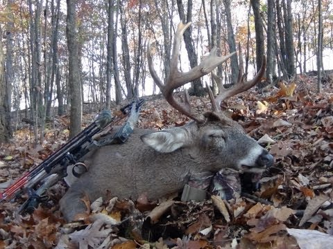 An Entire Whitetail Deer Season In Under 9 minutes! 3 buck down, 3 different weapons