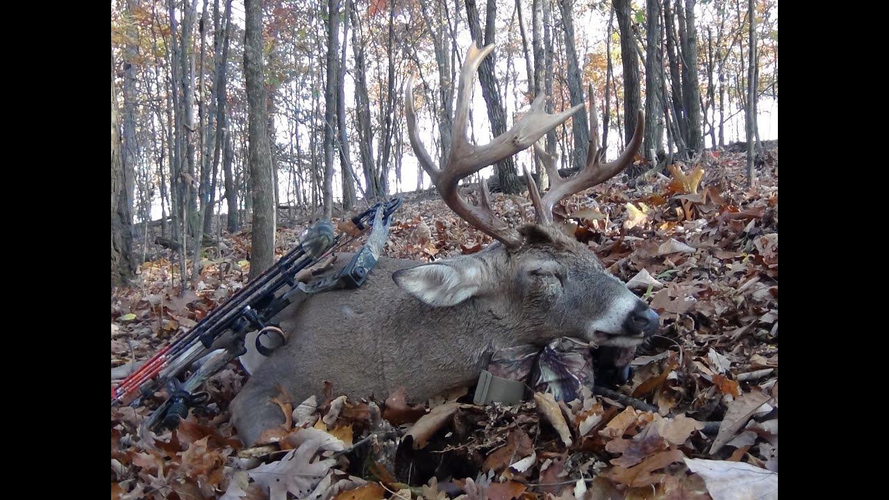 An Entire Whitetail Deer Season In Under 9 minutes! 3 buck down, 3 ...