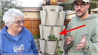 Planting Mom's Greenstalk Garden - A Better Way to Grow Food In A Suburban Backyard