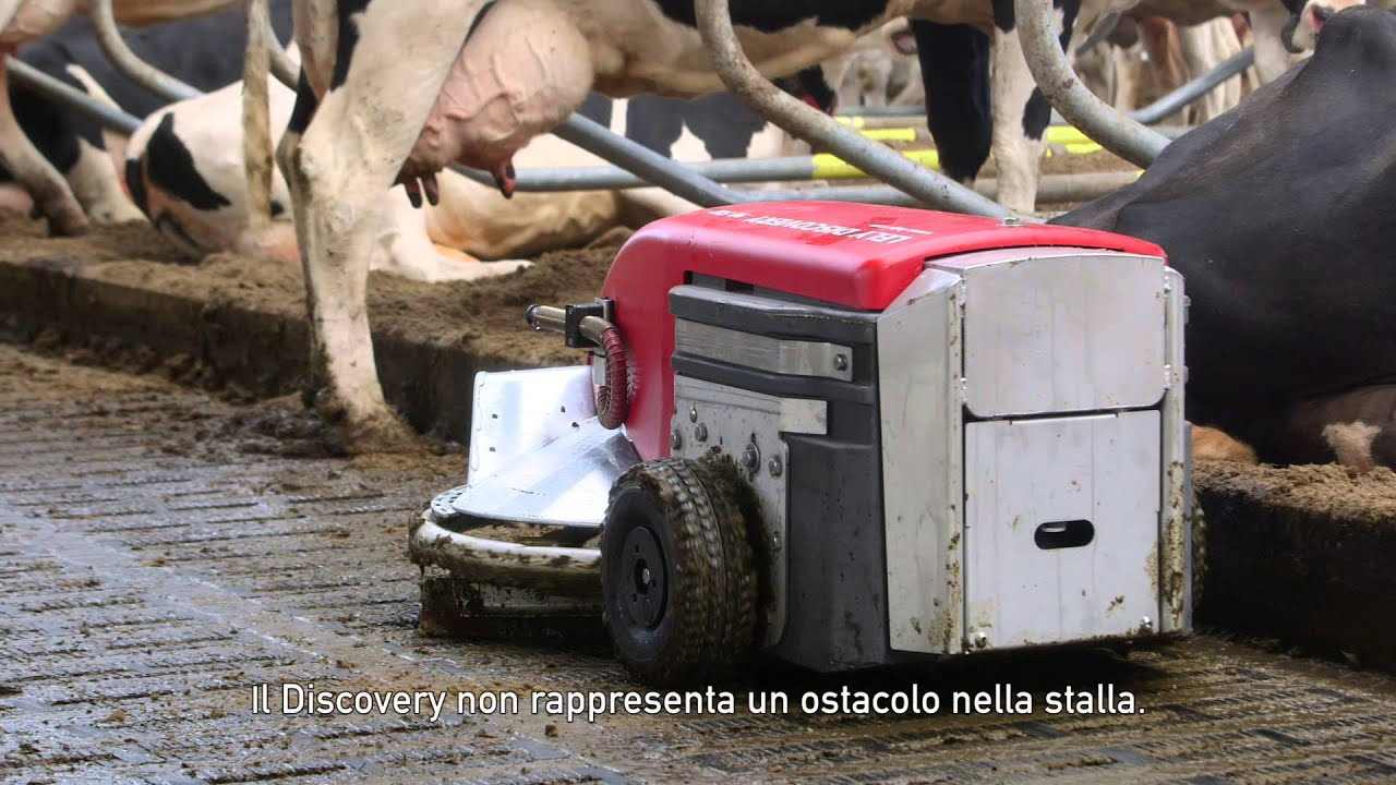 Lely Discovery 90SW - Testimonial Jack Nicolaes (IT/NL)