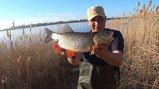 Рыбалка на Волге Рыбалка на Донку Закидушки Ловля на Течении Рыбалка 2021 Голавль