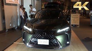 2019 Lexus UX 200 Exterior and Interior 4K