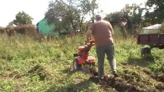Repeat youtube video Motocultor ROTAKT ROG90 cu plug de scos cartofii