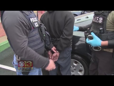 "Md. Immigrants Concerned About ""Targeted Enforcement Operations"""