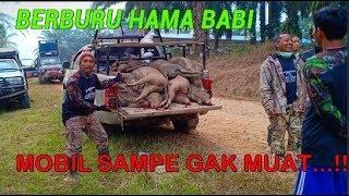 Download lagu SAFARI BERBURU HAMA BABI HUTAN LIAT HASILNYA...!!    PERBAKIN MUSI RAWAS 2019