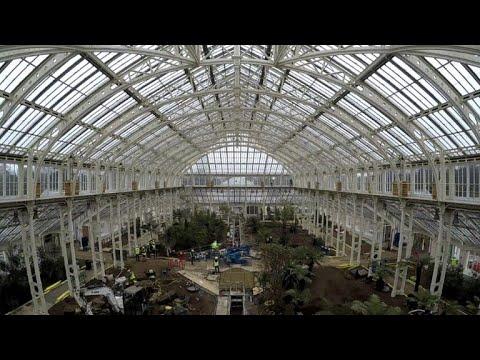 أكبر بيت زجاجي للنباتات يعيد فتح أبوابه قريبا في لندن