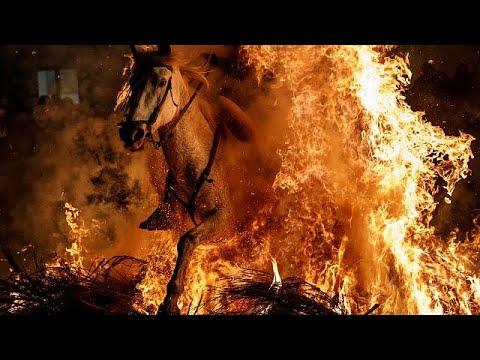 -تطهير- الخيول بالقفز عبر النار في إسبانيا  - نشر قبل 48 دقيقة