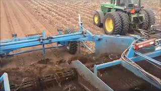 Horseradish Harvesting at Huntsinger Farms - Eau Claire, WI