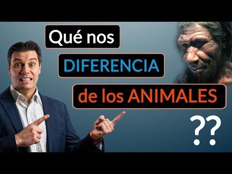 ¿Que nos diferencia de los animales?