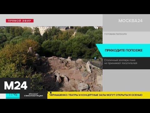 Московский зоопарк продлил режим закрытия до особых распоряжений - Москва 24