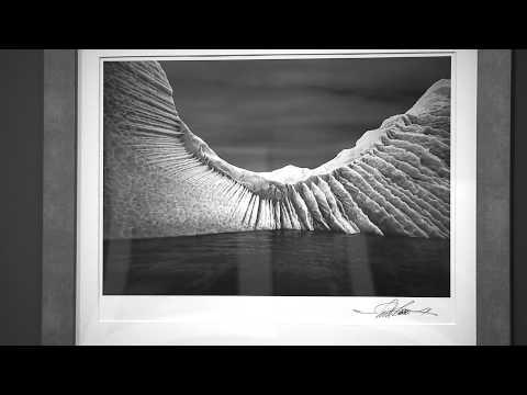 San Diego Museum Unveils 'Fragile Waters' Exhibit
