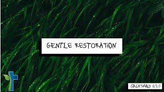 Gentle Restoration