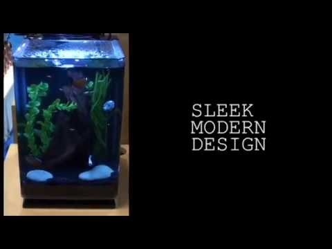 marineland portrait 5 gallon aquarium tagged videos on videoholder