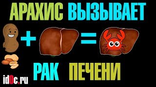 Рак Печени Арахис И Афлатоксин