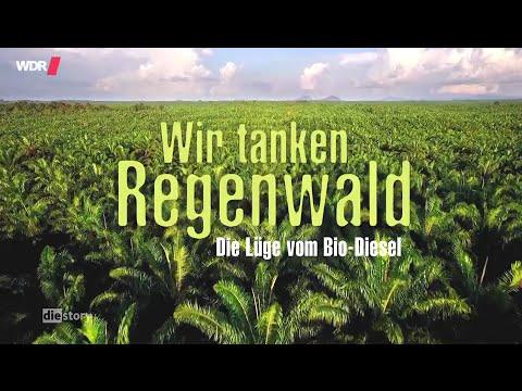 Wir tanken Regenwald – Die Lüge vom Öko-Diesel (2016)