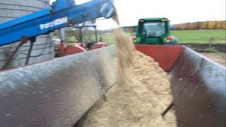 Feeding Out (New) Corn Silage!!!