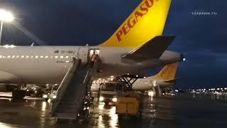 отзыв об авиакомпании Pegasus Airlines 2019: рейс Москва ( Внуково ) - Стамбул Турция и обратно
