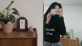 Vlog) 일상 브이로그 | 원룸 인테리어 | 자취생 …