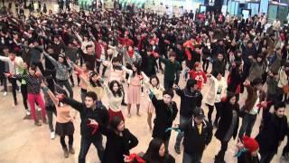 [121]대학생 1000여명이 함께 만든 국내최대 플래시몹