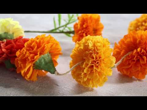 How to Make Marigold Paper Flowers | Sunset