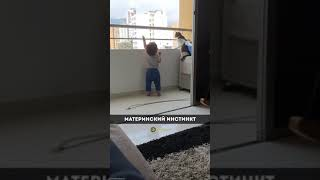 Кошка не даёт мальчику залезть на перила