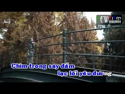 Karaoke Xin Lỗi Tình Yêu   Đàm Vĩnh Hưng Karaoke+ Online