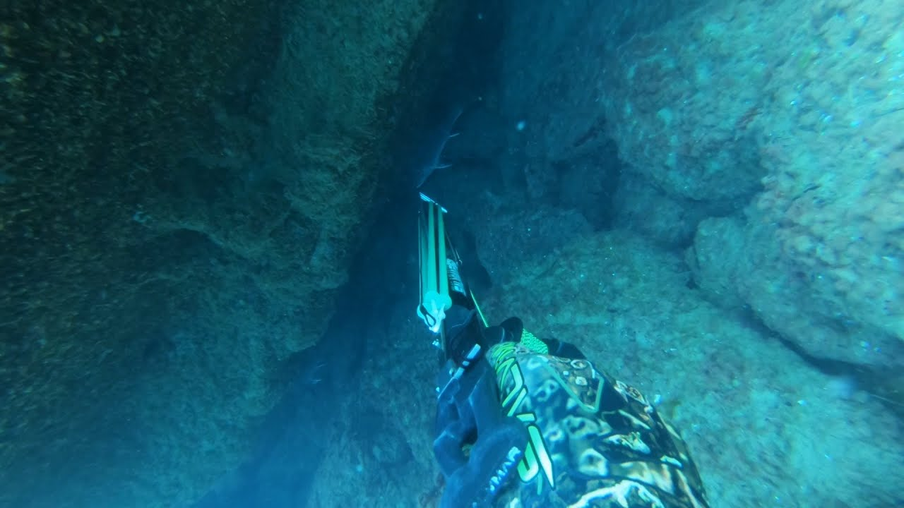 Прятки. Подводная охота на горбыля.