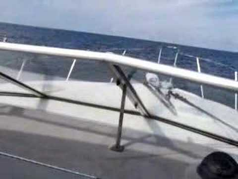 Wilmette Beach Boat Rental