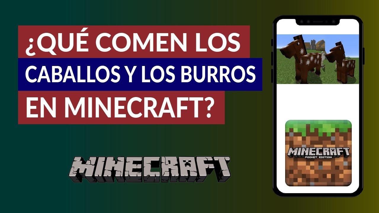Que Comen Los Caballos Y Burros En Minecraft Como Darles De Comer Mira Como Se Hace Con 1 fresh carrot se crea 2 carrot seed (semillas de zanahoria). que comen los caballos y burros en