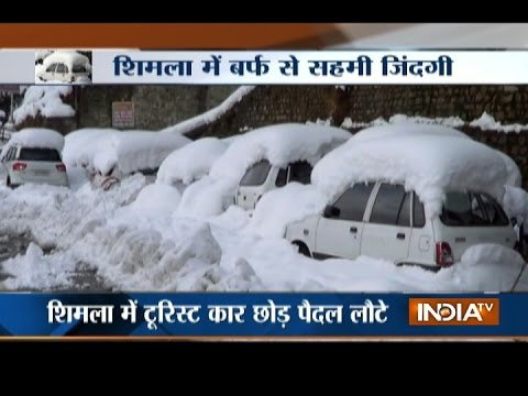 2 Killed as Snowfall in Shimla Renders Tourists Shelterless with No Food and Water