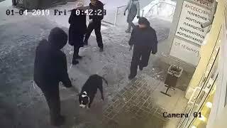 Начало конфликта между полицейским и супругами с собакой в Новосибирске