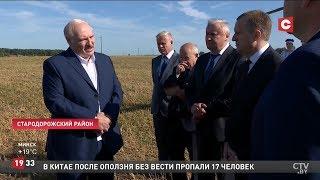 Лукашенко: Зачем это?! Для дохлых коров или быков? Это никому не нужно!