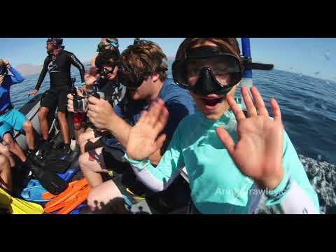 Annie Crawley's Dive