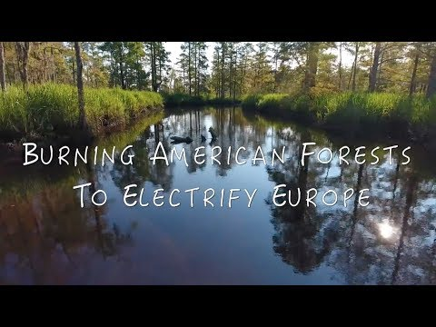 Burning American Forests to Electrify Europe - Wood Pellet Documentary - North Carolina USA