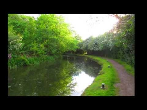 Osberton to Chesterfield canal