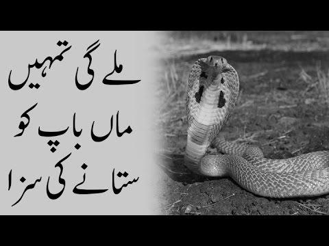 Islam   Madani Channel   Respect Parents   Maa Baap   Imran Attari