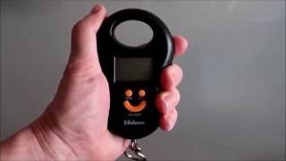 Электронные весы, кантер, безмен, термометр.  Aliexpress(, 2016-07-04T17:18:32.000Z)