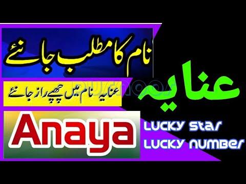 Anaya naem k meaning in urdu - Anaya Naam ka matlab kya ...