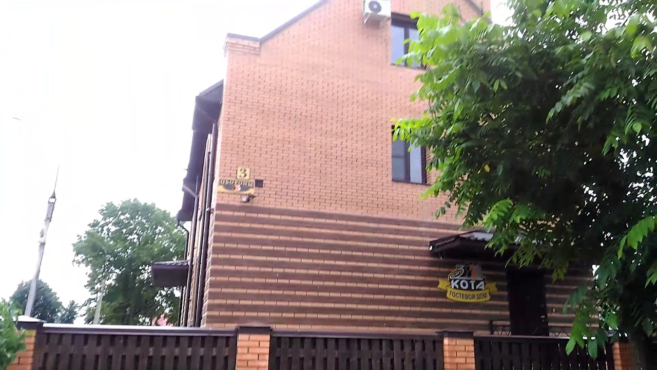 Гостиница великого новгорода три кота