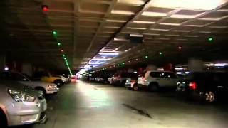 Decenas de coches abandonados se acumulan en parkings y talleres thumbnail