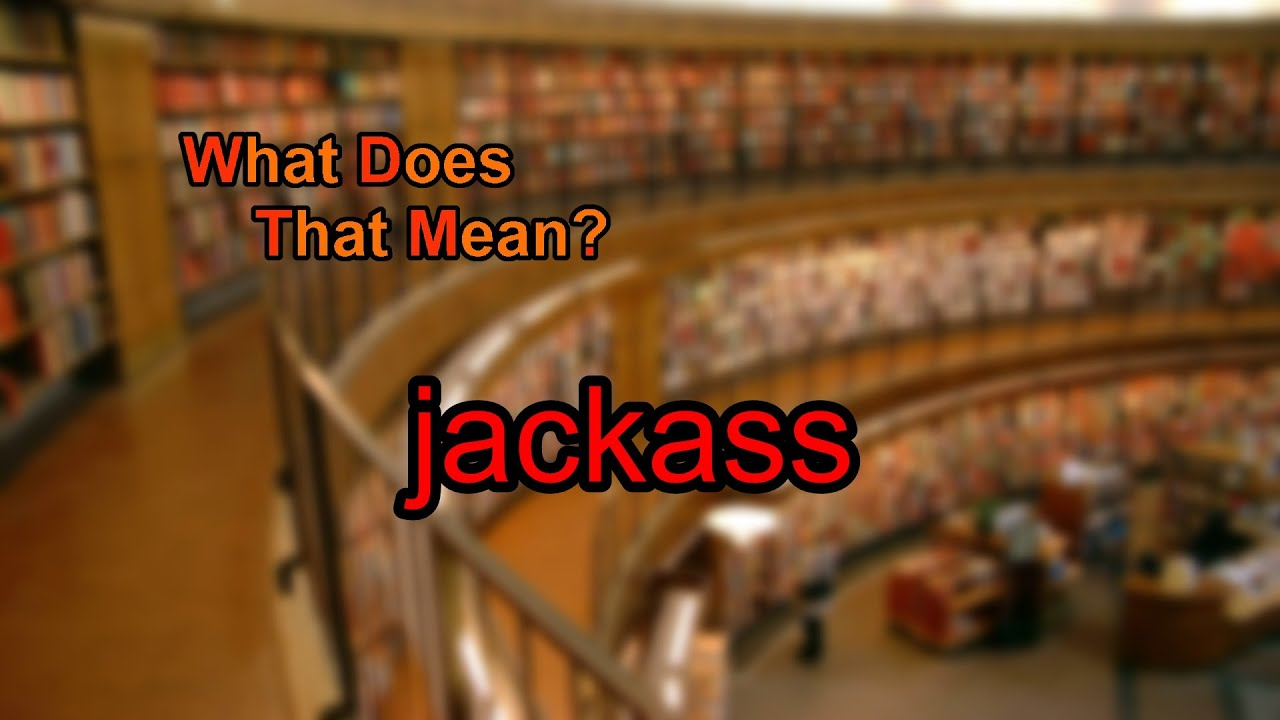What does a jackass mean