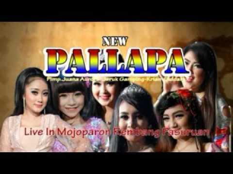 Suket teki - Dwi Ratna - NEW PALLAPA terbaru live in MOJOPARON Rembang Pasuruan