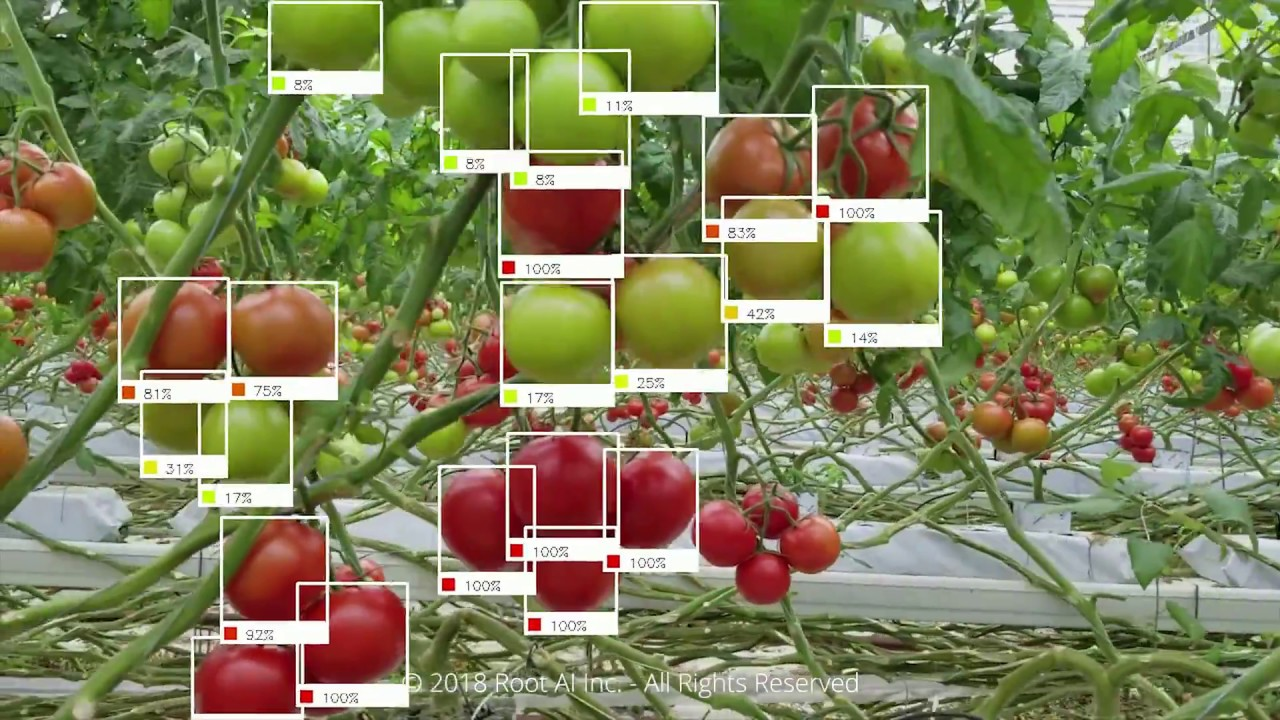 Smart Greenhouse Robotics Material Handling and Harvesting | Postscapes
